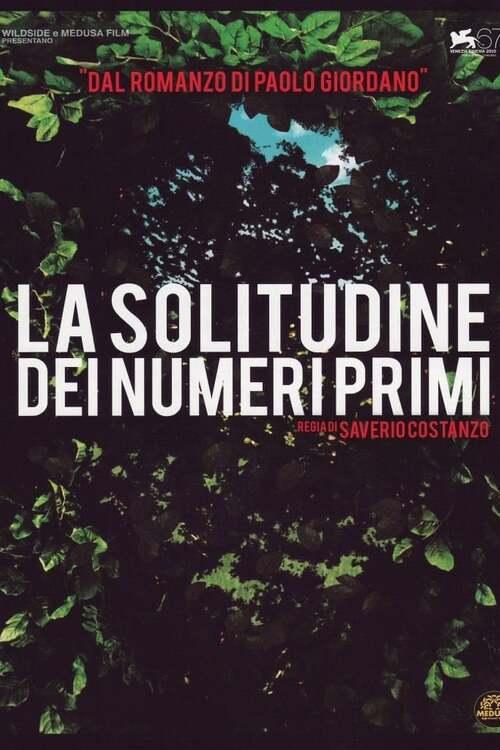 La solitudine dei numeri primi