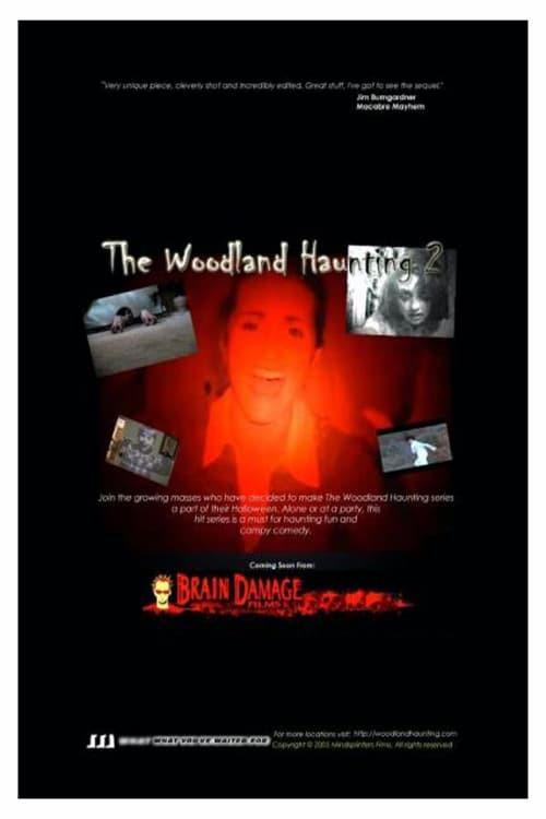 The Woodland Haunting 2