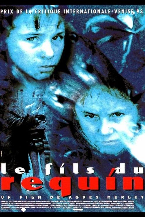 Le fils du requin