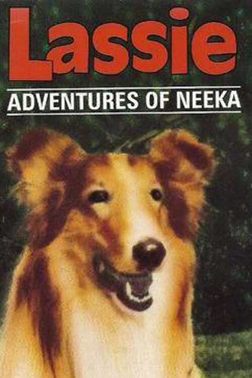 Lassie: The Adventures of Neeka