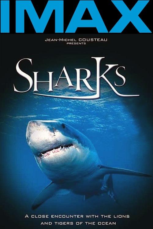 IMAX: Sharks 3D