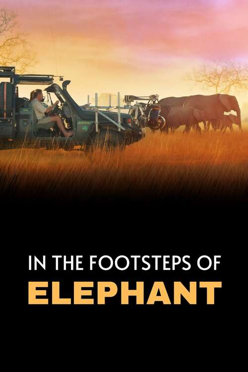 In the Footsteps of Elephant