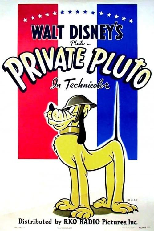 Private Pluto