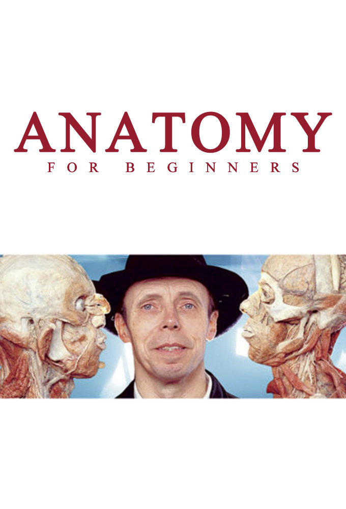 Anatomy for beginners video