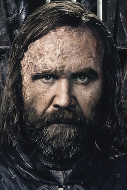 Game of Thrones-Rory McCann